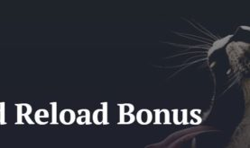 The Hunt for the Wildest Reload Bonus Begins at 21 Casino